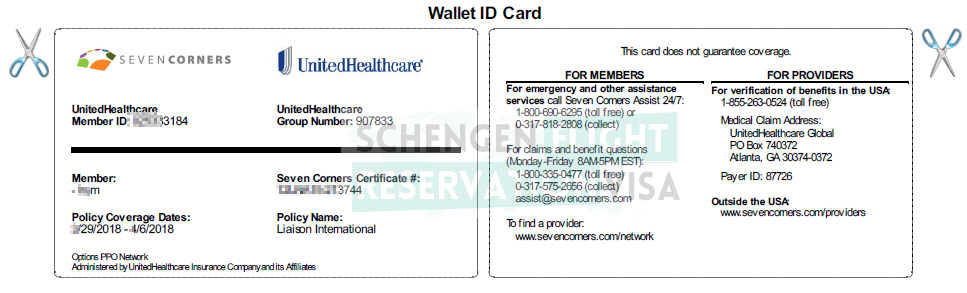 Travel Insurance ID Card Sample